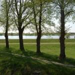 Blick auf Deich und Elbe